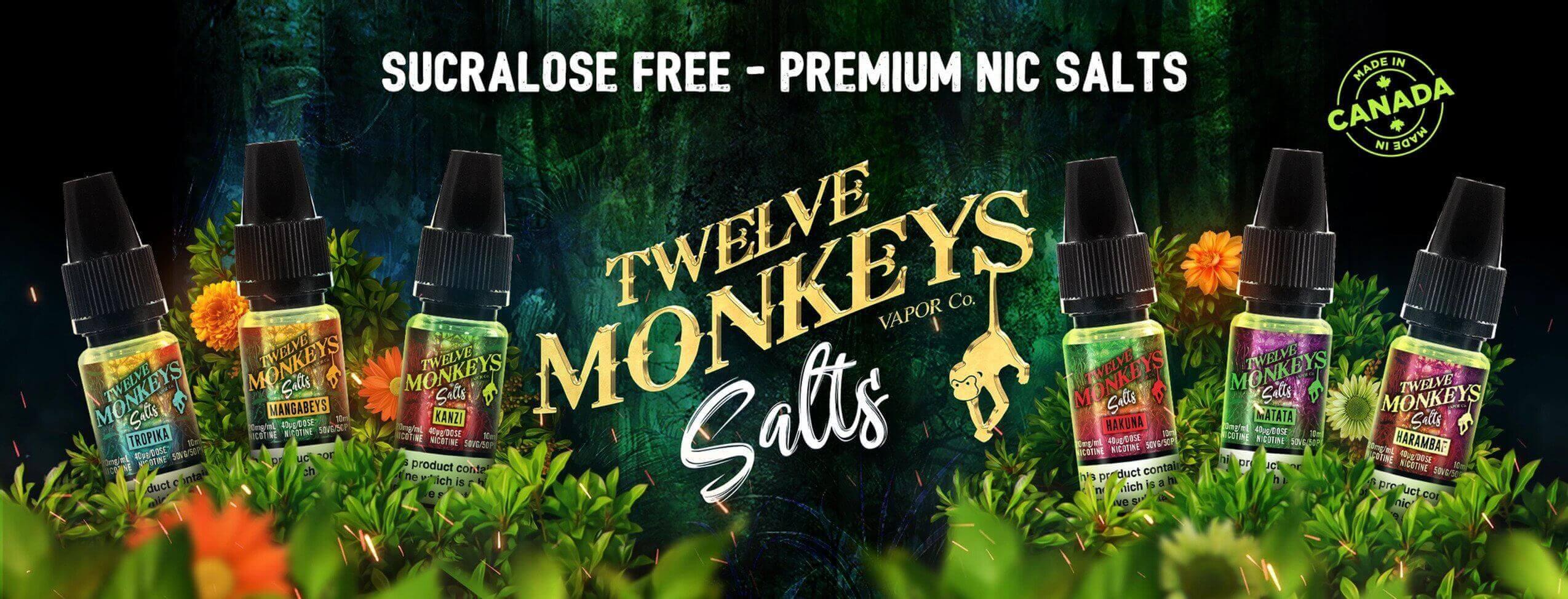Twelve monkeys nicsalt edinburgh banner